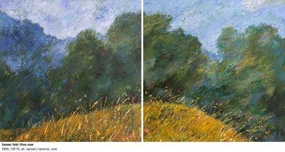 Art Studio by Sergiy Burtovyy - painting - Summer field